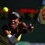Venus Williams was a comfortable 64 62 winner against Lucie Safarova. Photo: Getty Images