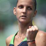Karolina Pliskova's stellar season continued as she downed fellow-Czech Strycova 61 64. Photo: Getty Images